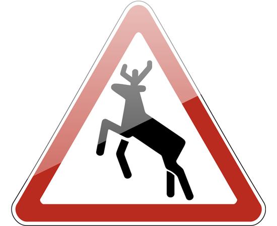 дорожный знак 1.27  Дикие животные, фото 1
