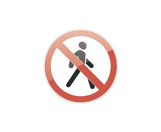 Знак 3.10  Движение пешеходов запрещено, фото 1