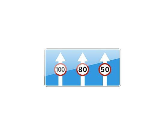 дорожный знак 5.15.8  Число полос, фото 1