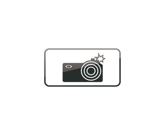 дорожный знак 8.23  Фотовидеофиксация, фото 1