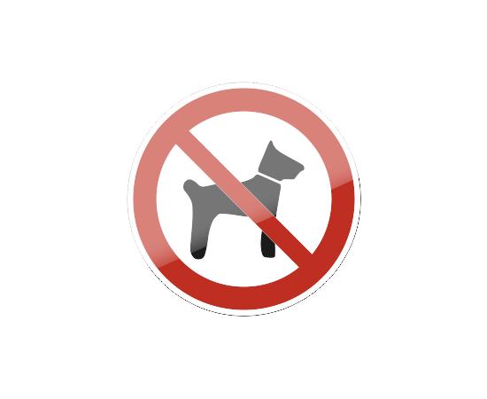знак P 14 Запрещается вход (проход) с животными, фото 1