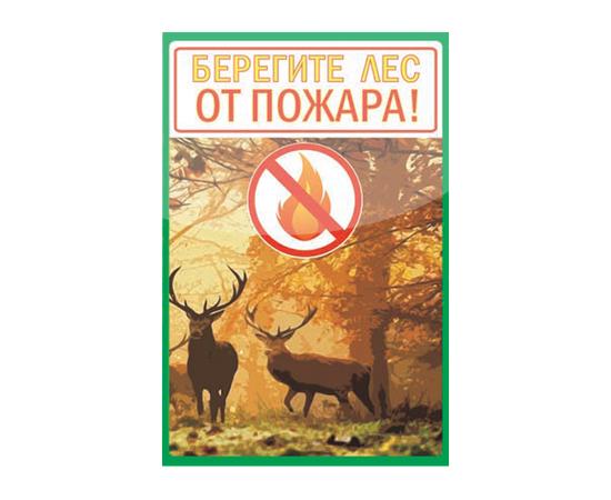 Аншлаг противопожарный Берегите лес от пожара! тип 2, фото 1