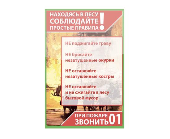 Аншлаг противопожарный «Правила поведения в лесу!» тип 10, фото 1