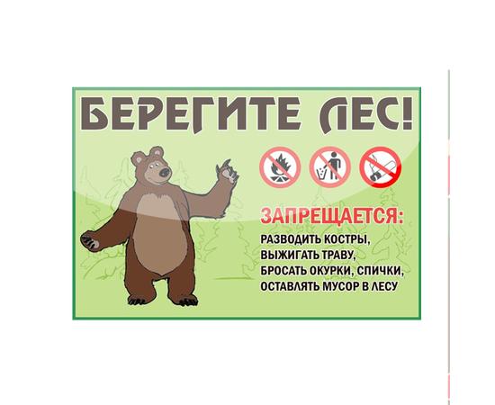 """Аншлаг противопожарный """"Берегите лес!"""" тип 5, фото 1"""