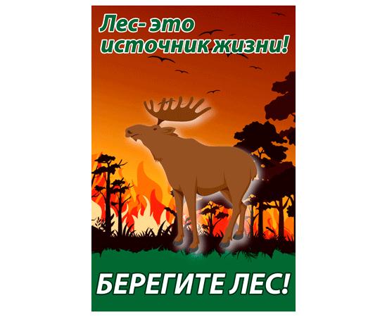 Лес-это источник жизни! тип 20, фото 1
